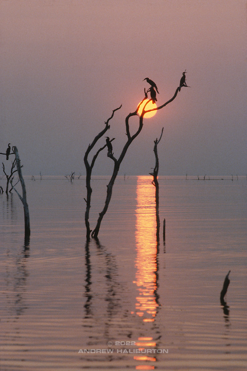 Lake Kariba Sunset by Stan Hellmann