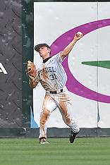 2013 Baseball Championship