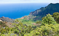 View of the Kalalau Valley and the Pacific ocean from Kokee State Park, Kauai, Hawaii, USA.