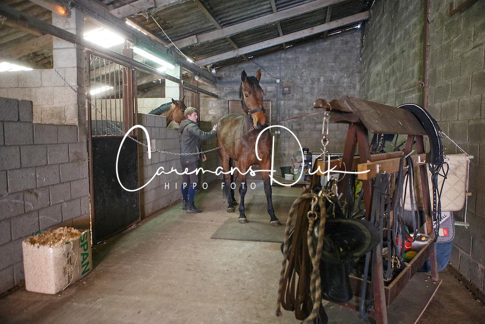 Kenis Pieter (BEL) - Donna Z <br /> Stal De Klundert - Beerse 2013<br /> &copy; Dirk Caremans