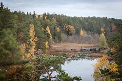 Höst i Nackareservatet, Stockholm.