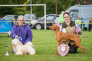Grinshill Animal Rescue Show 2017