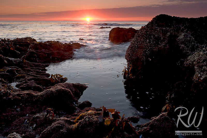 Sunset at Low Tide, Little Corona Del Mar Beach, California