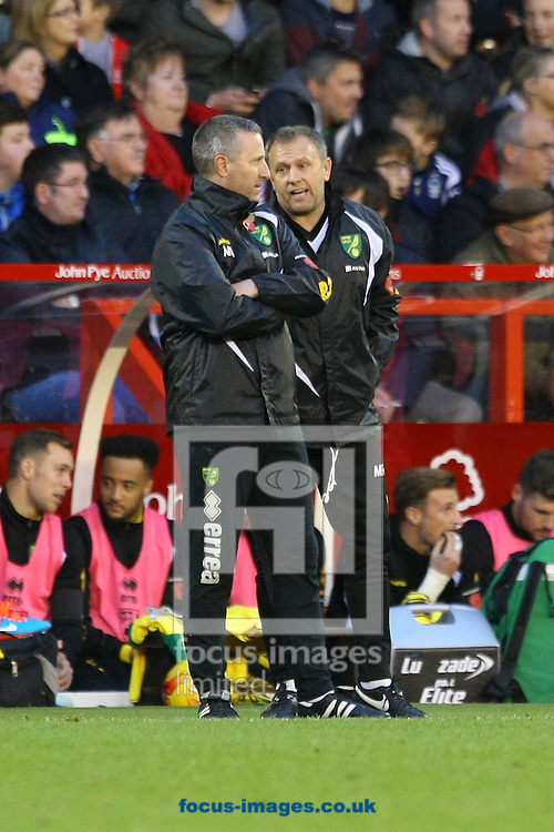 Norwich Manager Neil Adams and First Team Coach Mark Robson during the Sky Bet Championship match at the City Ground, Nottingham<br /> Picture by Paul Chesterton/Focus Images Ltd +44 7904 640267<br /> 08/11/2014