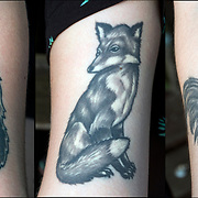 Cat Fox Rooster tattoos on her arm.<br /> <br /> Tattoos are no longer just a male thing, young women are just as likely to get a tattoo as males. <br /> <br /> Body art or tattoos has entered the mainstream it is no longer considered a weird kind of subculture.<br /> <br /> &quot;According to a 2006 Pew survey, 40% of Americans between the ages of 26 and 40 have been tattooed&quot;.
