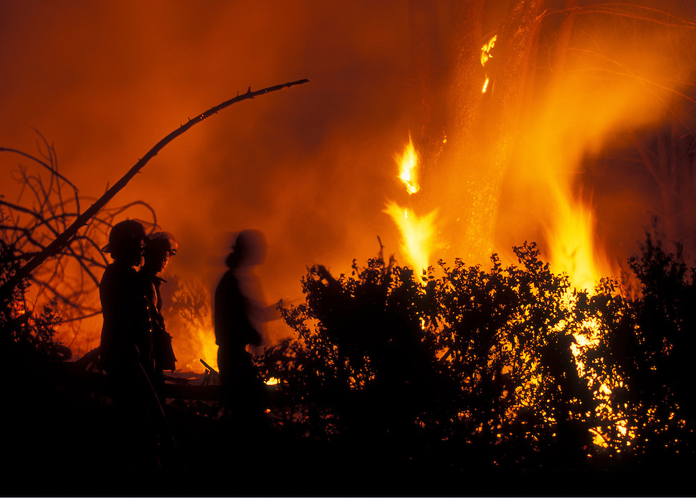 South Africa, Cape Town, Forest fire burning on slopes of Signal Hill silhouette fire fighters at night