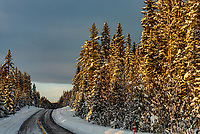 Snowy winter scene near Trysil, Norway.