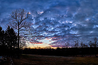 Dawn Morning Clouds. Winter Backyard Nature in New Jersey. Composite of 4 images taken with a Fuji X-T1 camera and 16 mm f/1.4 lens (ISO 200, 16 mm, f/5.6, 1/125 sec).