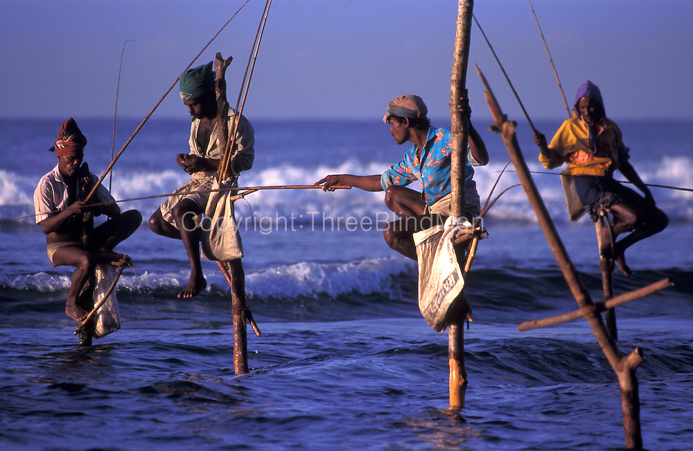 Stilt Fishermen on the south coast, near Kosgoda.