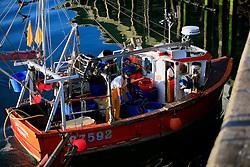 UK CORNWALL NEWLYN 10JUN08 - Fishing boat lands at Newlyn harbour in Cornwall, western England...jre/Photo by Jiri Rezac / WWF UK..© Jiri Rezac 2008..Contact: +44 (0) 7050 110 417.Mobile:  +44 (0) 7801 337 683.Office:  +44 (0) 20 8968 9635..Email:   jiri@jirirezac.com.Web:    www.jirirezac.com..© All images Jiri Rezac 2008 - All rights reserved.