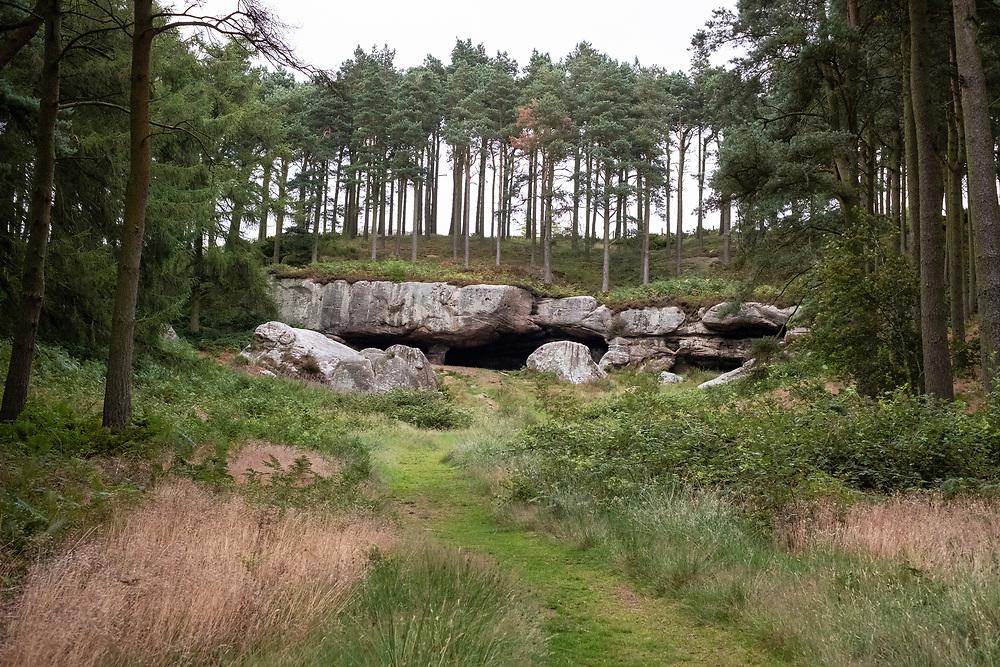 St Cuthbert's Cave, Kyloe Hills, Northumberland, England, UK<br /> Photo: Ed Maynard<br /> 07976 239803<br /> www.edmaynard.com