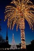 A palm tree decorated with christmas lights frames St Matthews Church on historic Marion Square on December 19, 2011 in Charleston, South Carolina.