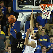 College of Charleston Guard Joe Chealey (13) drives to the basket as Delaware Forward Carl Baptiste (33) defends in the first half of a NCAA regular season Colonial Athletic Association conference game between Delaware and The College of Charleston Wednesday, Feb 5, 2014 at The Bob Carpenter Sports Convocation Center in Newark Delaware.