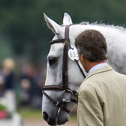 Andrew Nicholson and Shady Grey at Bramham Horse Trials 2010 competing in the CCI***