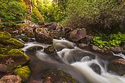 Devin river in springtime