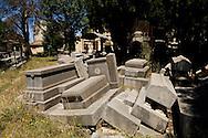 Algeria. Constantine. jewish cemetery    / Algerie, Constantine.  le cimetiere juif    14