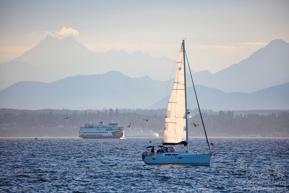 A sailboat and two Washington State Ferries cross Puget Sound between Edmonds and Kingston, Washington. Several peaks in the Olympic Mountain Range are visible in the background, including the Brothers, at left.