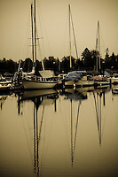 Sailboats moored safely in calm waters.