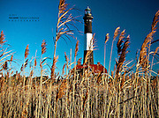 Fire Island Lighthouse Through the Reeds in Fall