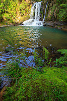 The Waiau Falls on the Coromandel Peninsual of the North Island of New Zealand