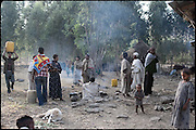 "A small commuity of amhara village prepares food and drinks to serve during the celebration of tthe early marriage of two young girls.. North West of Ethiopia, on saturday, Febrary 14 2009.....In a tangled mingling of tradition and culture, in the normal place of living, in a laid-back attitude. The background of Ethiopia's ""child brides"", a country which has the distinction of having highest percentage in the practice of early marriages despite having a law that establishes 18 years as minimum age to get married. Celebrations that last days, their minds clouded by girls cups of tella and the unknown for the future. White bridal veil frame their faces expressive of small defenseless creatures, who at the age ranging from three to twelve years shall be given to young brides men adults already...To protect the identities of the recorded subjects names and specific places are fictional."