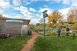 Association des jardins ouvriers de Lyon du parc Gerland // Association of allotment of Gerland park