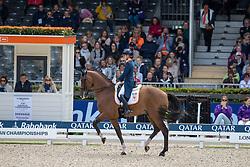 Meulendijks Anne, NED, MDH Avanti<br /> European Championship Dressage<br /> Rotterdam 2019<br /> © Hippo Foto - Dirk Caremans