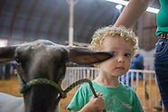 Logan County Fair 2016