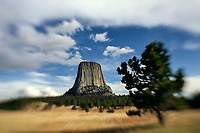 LB00149-00...WYOMING - Devils Tower along the Joyner Ridge Trail in Devils Tower National Momument.