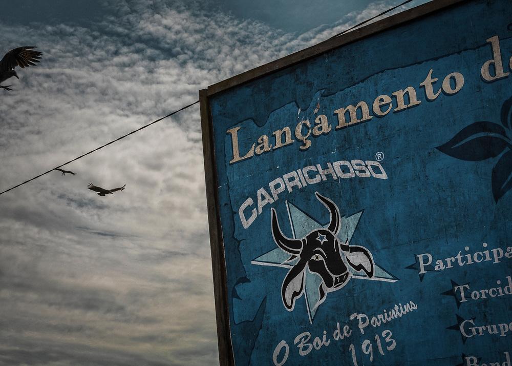 Brésil, Amazonas, Parintins. Caprichoso, le boeuf des notables. La rivalite historique entre les Bœufs Garantido et Caprichoso impregne les murs et les ames. Chaque annee a la fin du mois de juin, il est imperatif de choisir son camp. Au cœur de l'Amazonie, a 400 km au sud-est de Manaus, Parintins vibre pour un evenement qui attire plusieurs dizaines de milliers de personnes venus de tout le pays : le Boi-Bumba.