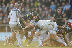 Dave Ewers, of Exeter Chiefs goes into contact.  - Mandatory byline: Alex Davidson/JMP - 12/03/2016 - RUGBY - Sandy Park -Exeter Chiefs,England - Exeter Chiefs v Newcastle Falcons - Aviva Premiership