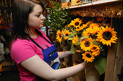 Florist arranging flowers for sale in flower shop,