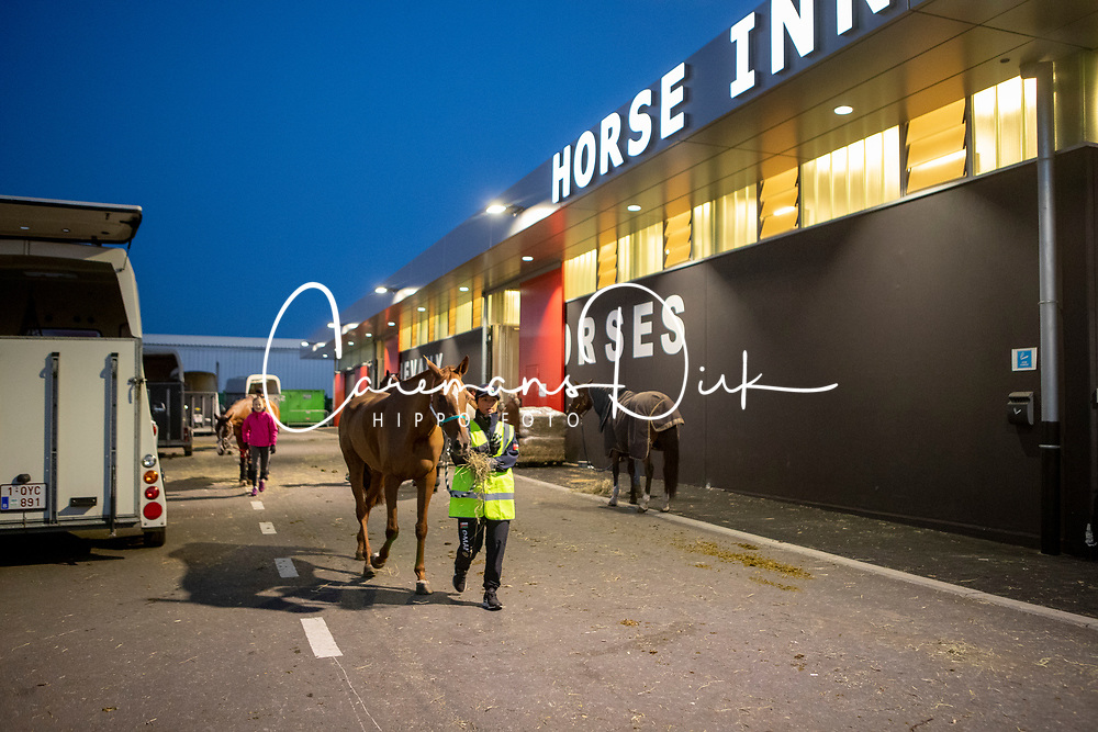 Endurance Team Sultanate of Oman<br /> Departure horses from Liege Airport<br /> FEI World Equestrian Games™ Tryon 2018<br /> © Hippo Foto - Dirk Caremans<br /> 02/09/2018