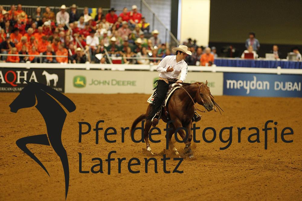 GONZALEZ BARRAGAN Alejandro Roberto, Custom Harley<br /> Kentucky - Alltech FEI WEG 2010<br /> /Stefan Lafrentz