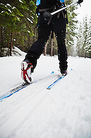 Low angle view of a woman cross country skiing in classic style on a groomed track, Cabin Creek, WA.