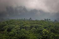 View of lush jungle meeting the fog hidden moutainside near Sapa in Lao Cai Province, Vietnam, Southeast Asia