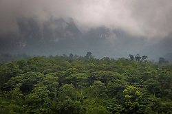 View of lush jungle meeting the fog hidden moutainside near Sapa in Lao Cai Province, Vietnam, Southeast Asia
