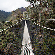 Canopy walkway at Wayqecha Biological Reserve on the Eastern slopes of the Peruvian Andes. Cloud forest at 2950 meters elevation. The reserve is managed by the Amazon Conservation Association and the Asociación para la Conservación de la Cuenca Amazónica.
