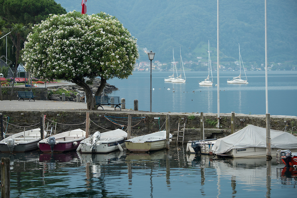 Europe; Switzerland; Ticino; Ascona, Lago Maggiore, lakefront, harbor,boats