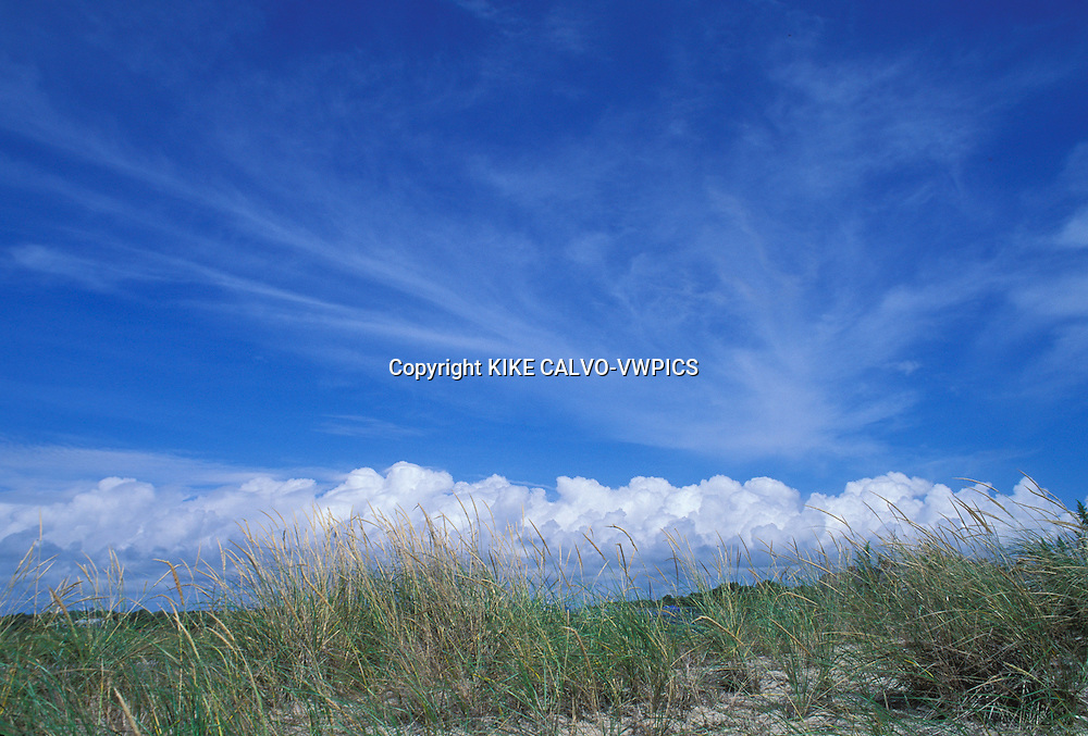 Sand dunes.Cape Cod United States..