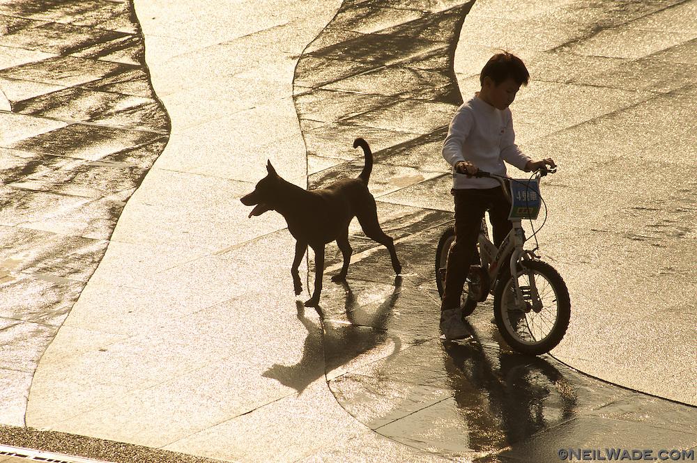 A boy and dog play at Bitan, Taipei, Taiwan.