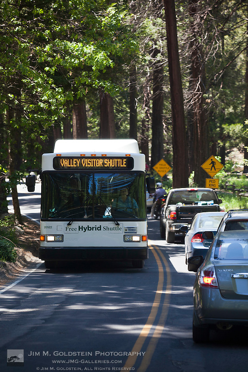 A hybrid visitor shuttle drives past a back up of cars on the Yosemite Valley Loop road in Yosemite National Park, California