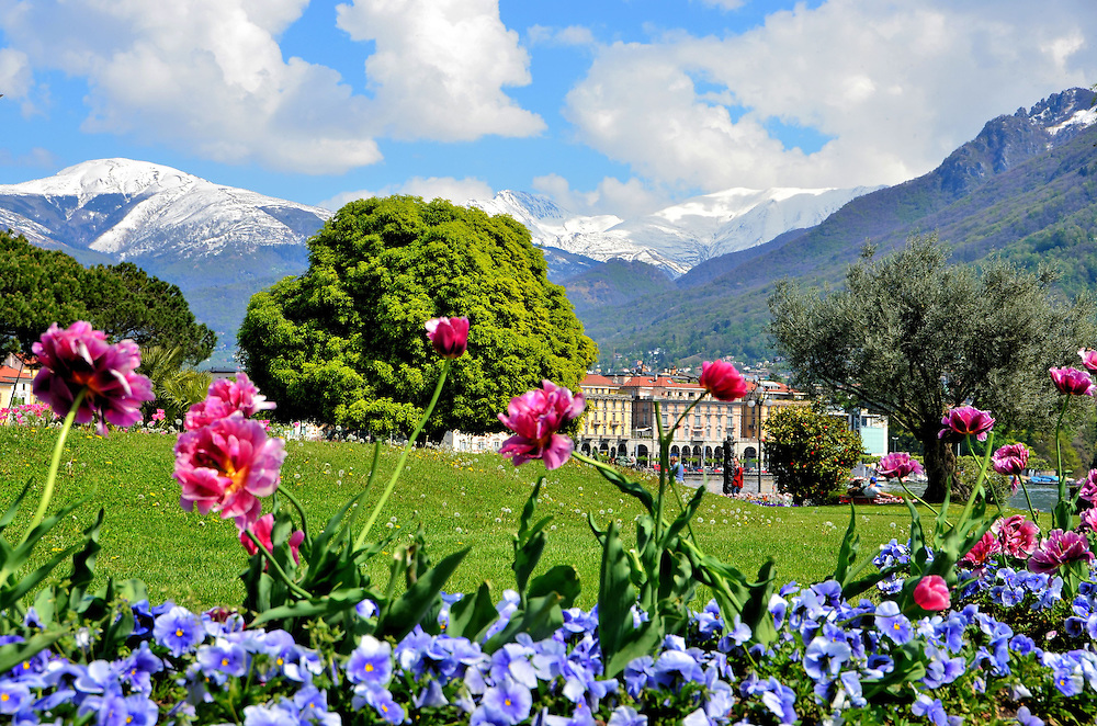 Flowers and Snow-capped Alps in Lugano, Switzerland<br /> This wonderful Swiss town just north of the Italian boarder hosts a Mediterranean climate and is graced with parks filled with gorgeous plants, flowers and palm trees. This gem is nestled along the shore of Lake Lugano with spectacular vistas of Mounts San Salvatore and Br&eacute;. The town is sometimes called &ldquo;Queen of the Ceresio.&rdquo; It is better known as Lugano, Switzerland.