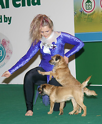 Jodie Farber takes Hazel and Bramble through their exercises at the London Pet Show in London's Earls Court, Sunday May 12 2013. Photo by: Max Nash / i-Images
