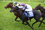 GULLIVER (4) ridden by by Jason Hart and trained by David OMeara winning The Coral Sprint Trophy over 6f (£100,000) at 16/1  during the York Coral Sprint Trophy meeting at York Racecourse, York, United Kingdom on 12 October 2019.