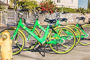 Fleet of Limebikes Dockless Bike Sharing