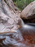 Swirlie with tannin-colored water, Romero Creek, Santa Catalina Mountains