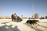 3/3/2007:  Anchorage Alaska -  Veteran Martin Buser of Big Lake, AK takes his dogs around a corner during the start of the 35th Iditarod Sled Dog Race