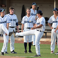 Wilmington Sharks baseball players kick the baseball around before the start of the game against the Wilson tobs at Buck Hardee Field in Wilmington on Wednesday. Mike Spencer/StarNews