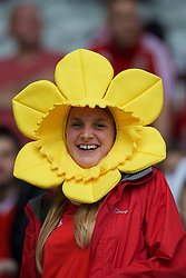 LILLE, FRANCE - Friday, July 1, 2016: A Wales supporter wears a daffodil hat ahead of the UEFA Euro 2016 Championship Quarter-Final match against Belgium at the Stade Pierre Mauroy. (Pic by Paul Greenwood/Propaganda)